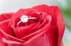mariage en Belgique