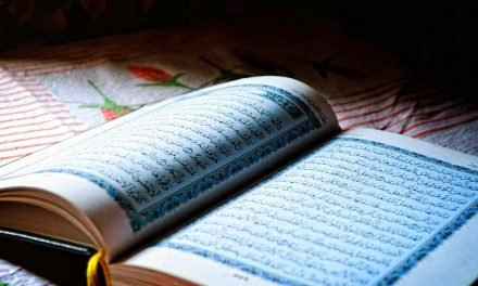 Vidéos du Cheikh Hafez Salama et du Cheikh  Alhewani
